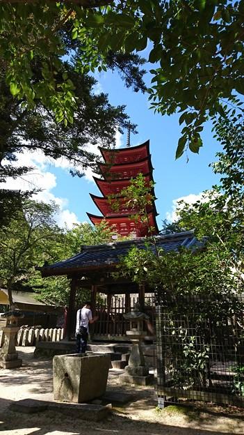 Photos: 宮島観光