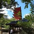 写真: 宮島観光