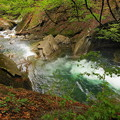 rs-170514_S1628_母胎淵~カエル岩(西沢渓谷) (1)