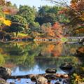 171107_07_日本庭園の様子・S18200(昭和記念公園) (1)