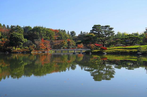171107_07_日本庭園の様子・S18200(昭和記念公園) (5)