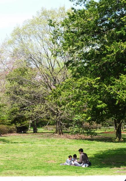 ほのぼの親子@昭和記念公園