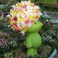 写真: 花アフロ♪GARDEN BEAR(ガーデンベア)