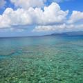 写真: 海中展望台