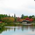 Photos: 日本庭園の池のまわりも