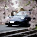 写真: photo-2369
