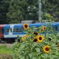 1,000系 富士登山電車