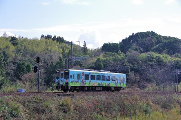 写真: ラッピング列車