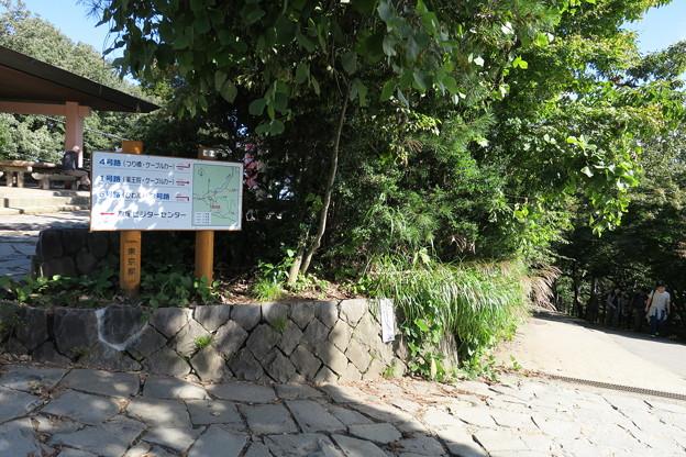 170929-94高尾山・山頂・いよいよ下ります