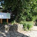 写真: 170929-94高尾山・山頂・いよいよ下ります