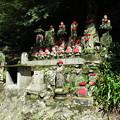写真: 170929-110高尾山・道沿いのお地蔵さん