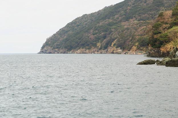 伊方町田部の風景