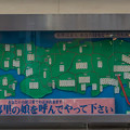 東京銀座 白いばら