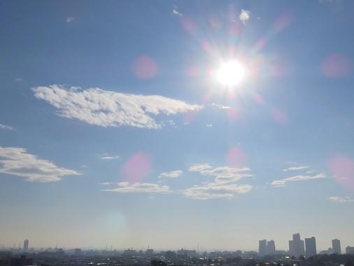 小春日和(2017.11.29)