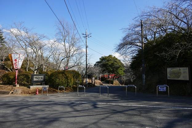 城山公園@小見川町P1030525
