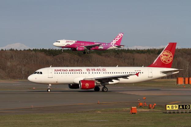 A320 吉祥航空とPeach