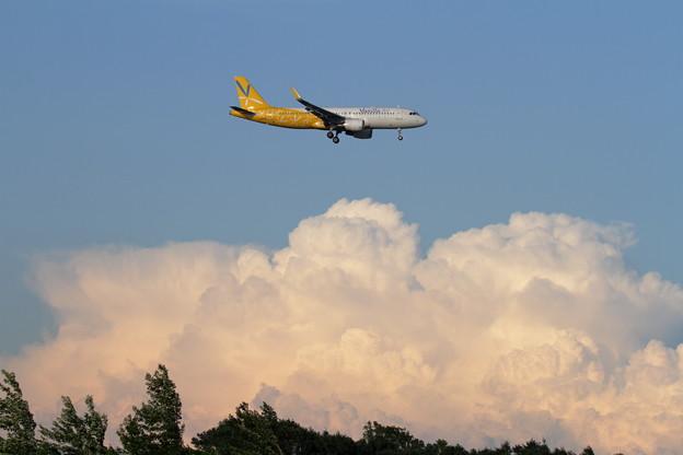 A320 Vanilla Airと湧き上がる雲