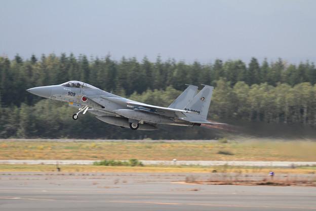 F-15 チョット秋色 (1)