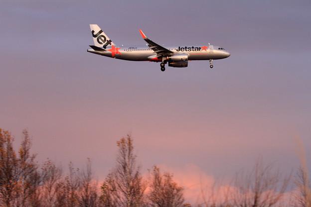 A320 ピンク色に焼けた空