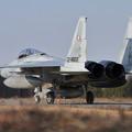 写真: F-15 203sq 帰投 (2)
