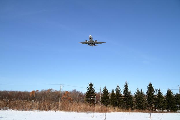 B737 ANA Wings approach