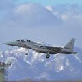 写真: F-15DJ 075 201sq approach
