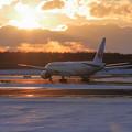 B777 JAL と夕陽