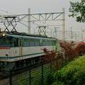 メトロ13000系甲種輸送【EF65 2066牽引】