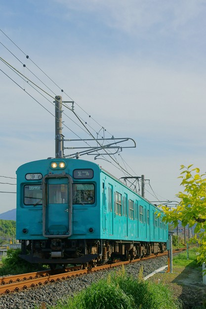 Photos: 105系 和歌山線