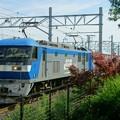 Photos: 5058レ【EF210-130牽引】