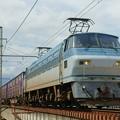 Photos: 1086レ【EF66 119牽引】