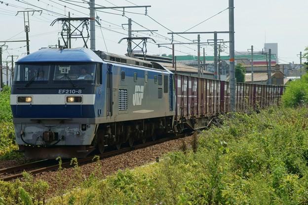 Photos: 5058レ【EF210-8牽引】