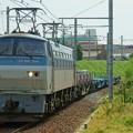 Photos: 配6866レ【EF66 104牽引】