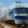 Photos: 1086レ【EF210-106牽引】
