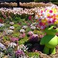 Photos: 横浜花のイベント3