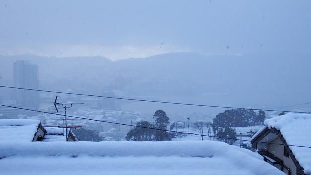 また雪が~