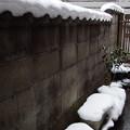 写真: まだまだ残る雪 2