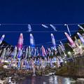 2017 杖立温泉の鯉のぼり1