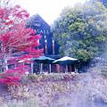2017 金鱗湖の紅葉9