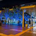 2017 博多駅のイルミネーション1