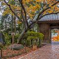2017 大興善寺の紅葉1