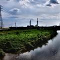 やがて至る柳瀬川