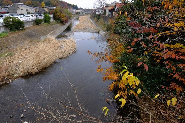 南浅川を渡り