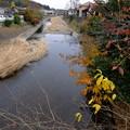Photos: 南浅川を渡り
