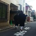 Photos: 京王線 (58)