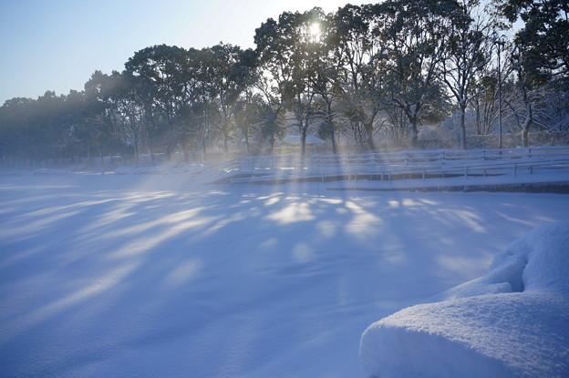 光芒の雪原