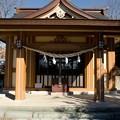 DSC_6974 能ヶ谷神社 3