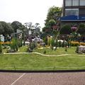 写真: 港の見える丘公園 緑化フェア