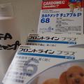 写真: 予防薬&シャンプー
