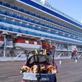 写真: 大桟橋の大型客船